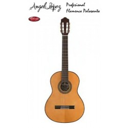 Guitarra Angel Lopez CF1246S